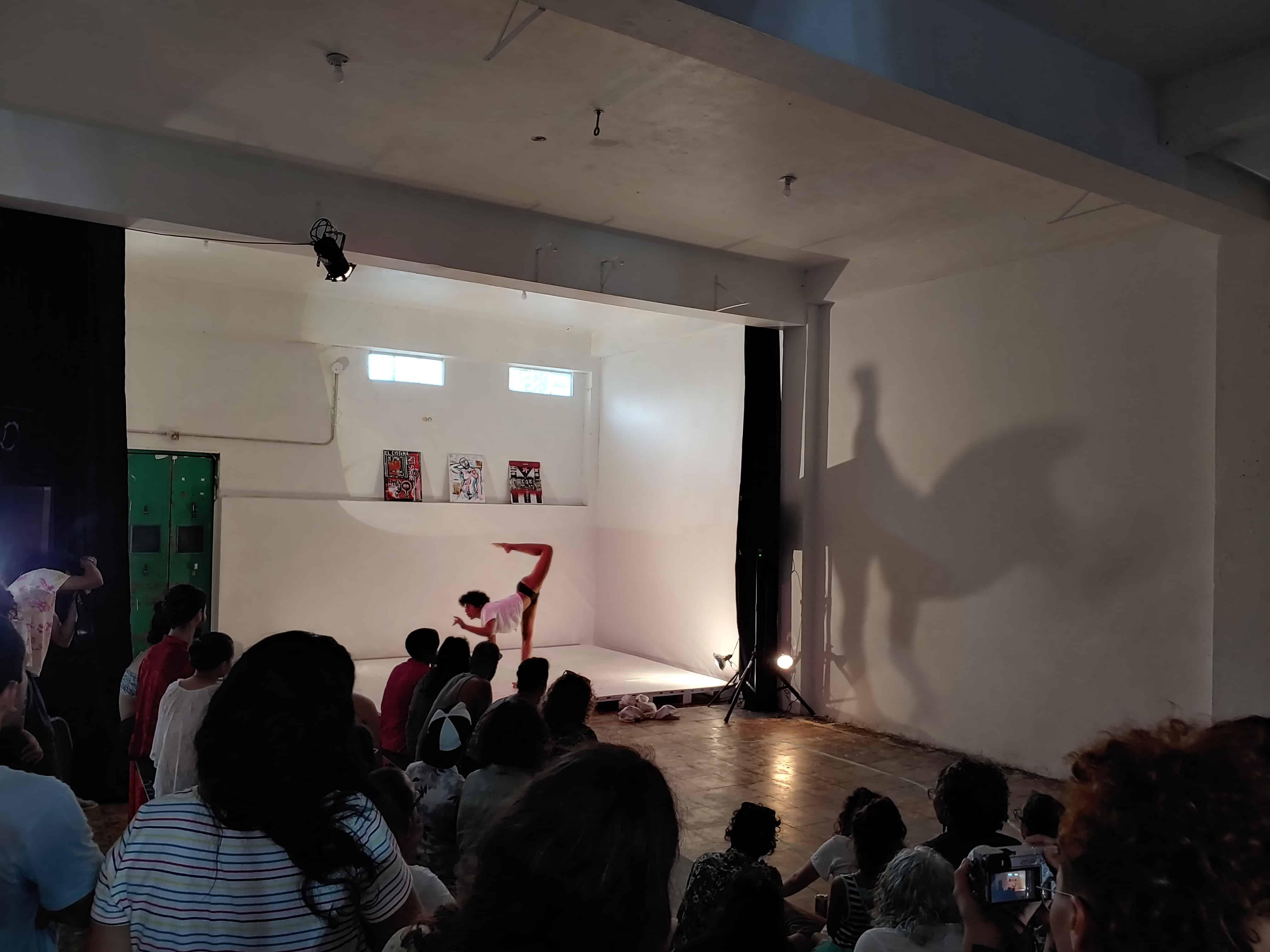 Artistas celebran festival para recaudar fondos para una operación de afirmación de género